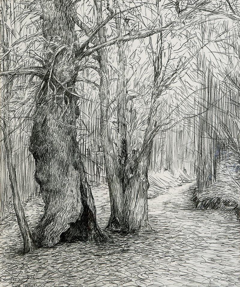 Fernando Domínguez Domínguez - Carboncillo sobre papel - 120x106 cm