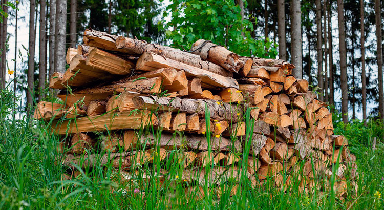 biomasaandalucia