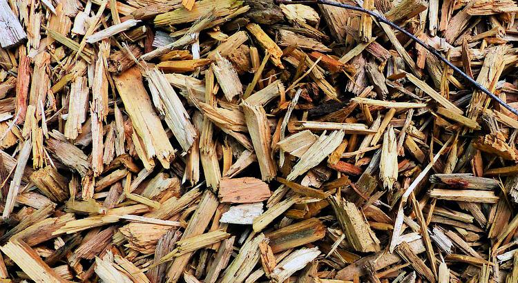 biomasa-util