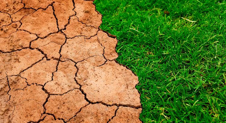 190409_Laura-Otero_Energia-para-evitar-el-cambio-climatico
