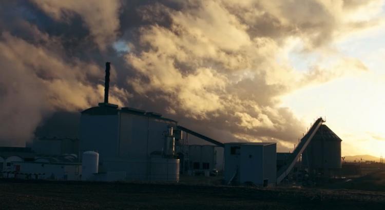 biomasa acciona